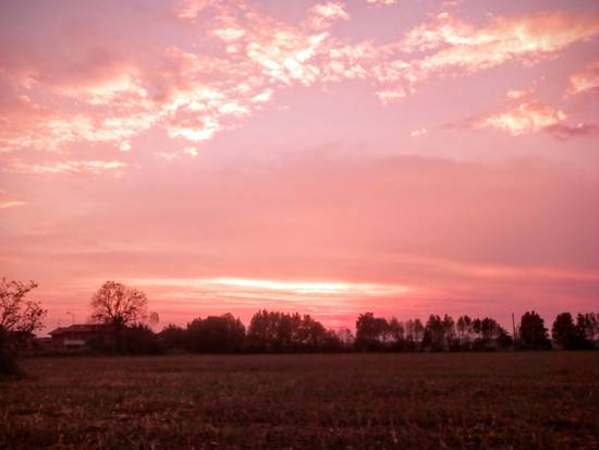 Cielo rosato