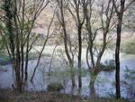 rarissima foto del Lago ai Prati Casalini