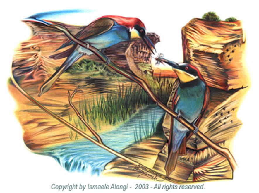 Gruccioni, 1998, Ismaele Alongi, cm 33 x 48, tecnica mista su cartoncino