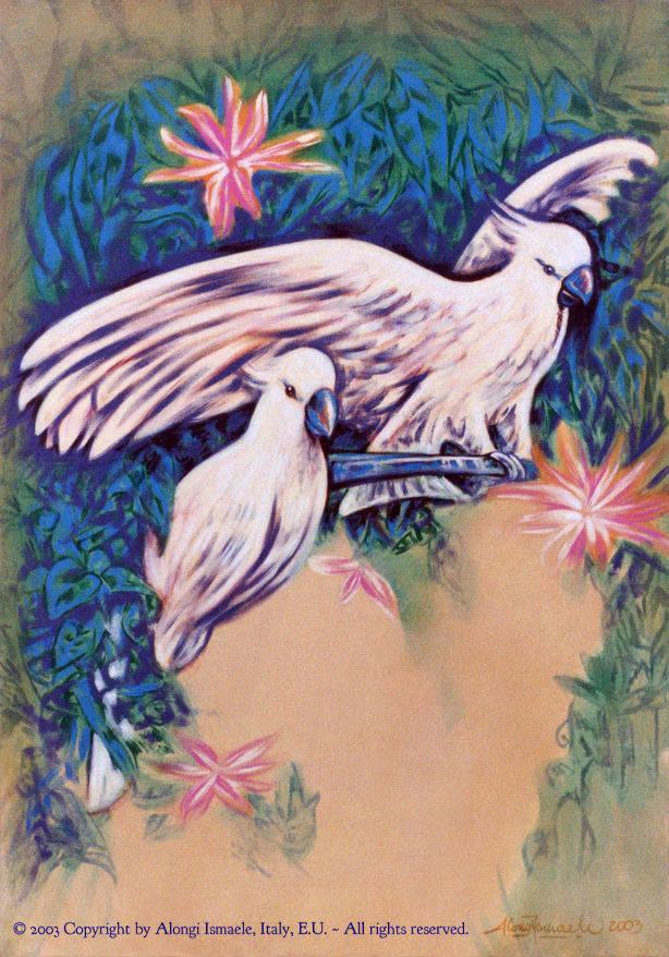 Coppia di pappagallini chiari, 2003, Ismaele Alongi, cm 50 x 70, acrilico su tela