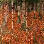 Birch Forest - originale di Kl