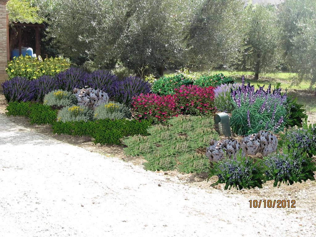 condividi la foto images progetto giardino del l dall