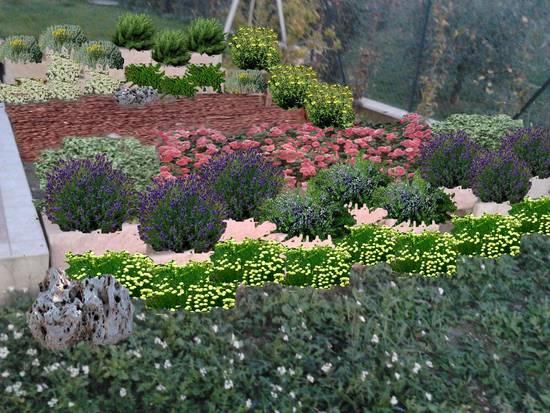 Foto images progetto piccolo giardi dall 39 album progetti - Progetto piccolo giardino ...