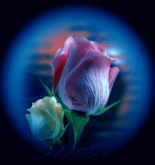 http://digiphotostatic.libero.it/juliet_is/med/fc8a9b7737_3077736_med.jpg