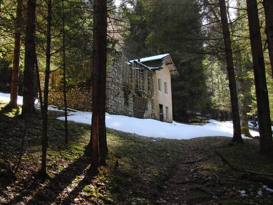 Foto case abbandonate nei boschi dall 39 album foto profilo for Case moderne nei boschi