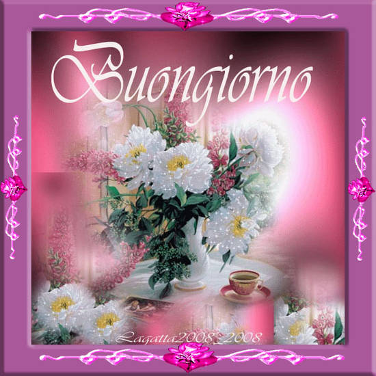 DOMENICA 6 MAGGIO 0b984a5988_2424259_med