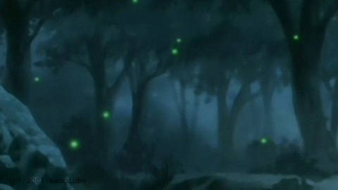 La ninna nanna della lucciola