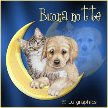 cuccioli_buona_notte_1b
