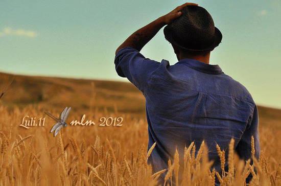Spirito del grano