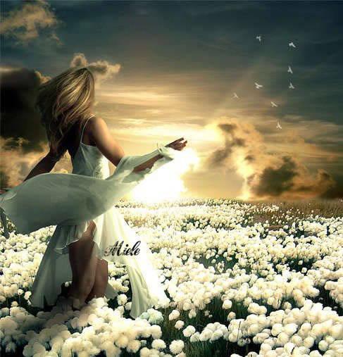 campo di fiori con donna