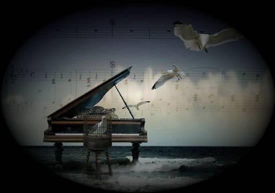 musicalibera (1)