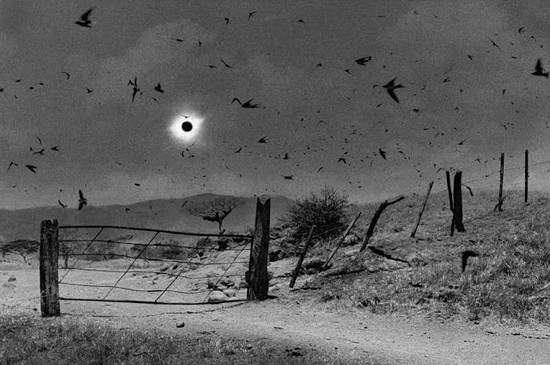 Antonio Turok eclipse web[1]