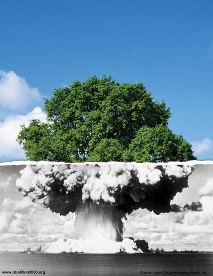 NUKE_TREE_300_8_5_www