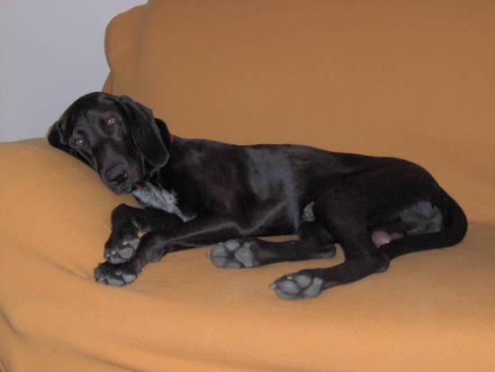 relax sul divano