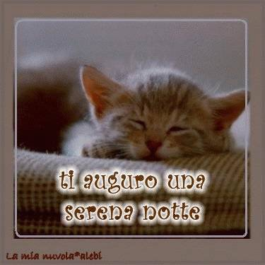 buona notte a tutti...qualche volta mi ricordo...ossia non mi scordo! dans immagini buona notte, buon giorno e....♥ a04a6141ab_5026957_med