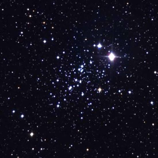 stella del desiderio
