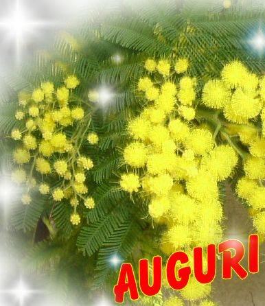 mimosa per tutte le donn3