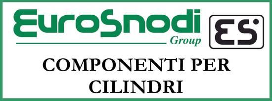 EuroSnodi