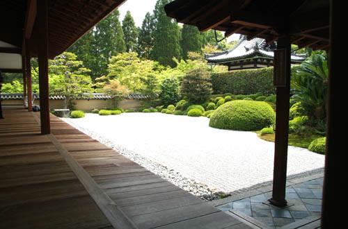 Foto 030 dall 39 album giardini zen di tiger253 su libero for Aiuola zen